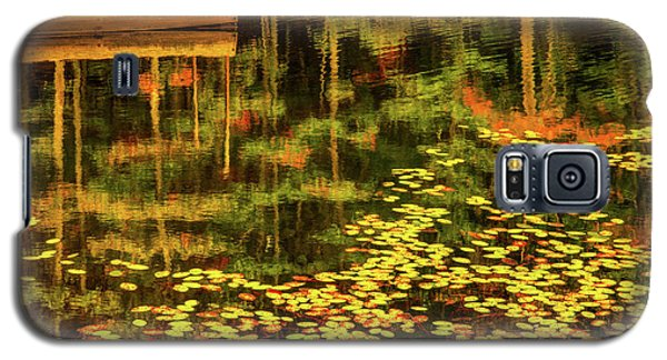 Fall Impressions Galaxy S5 Case by Rebecca Hiatt
