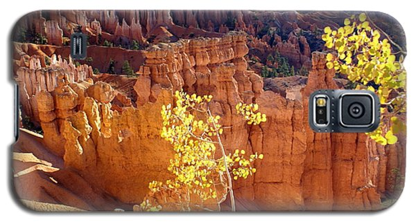 Fall In Bryce Canyon Galaxy S5 Case