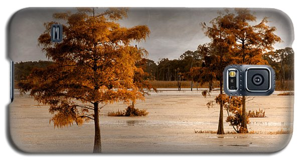 Fall In Florida Galaxy S5 Case