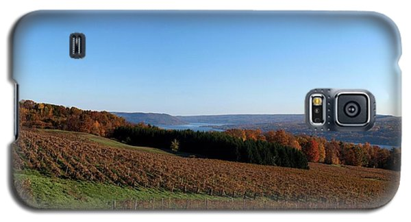 Fall In The Vineyards Galaxy S5 Case by Joshua House