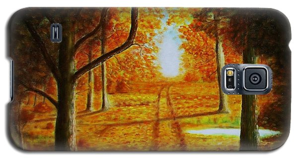 Fall In The Woods Galaxy S5 Case by Gene Gregory