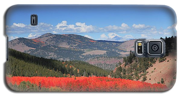 Fall In  Ute Trail  Galaxy S5 Case