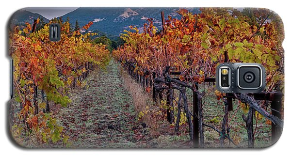 Galaxy S5 Case featuring the pastel Fall In Wine Country by Bill Gallagher