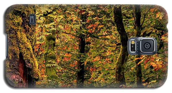 Fall Is Coming Galaxy S5 Case