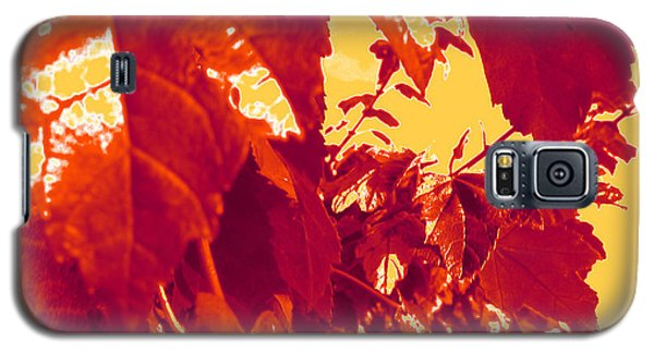 Fall Leaves #13 Galaxy S5 Case