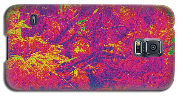 Fall Leaves #14 Galaxy S5 Case