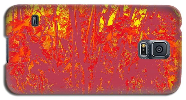 Fall Leaves #4 Galaxy S5 Case
