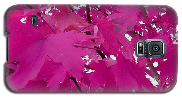 Fall Leaves #5 Galaxy S5 Case
