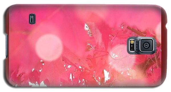 Fall Leaves #8 Galaxy S5 Case