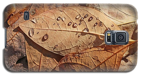 Fall Leaves And Dew 15 2017 Galaxy S5 Case
