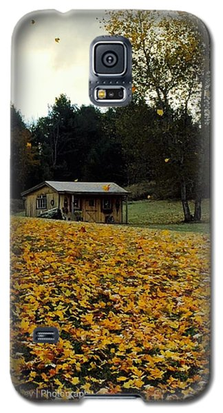 Galaxy S5 Case featuring the photograph Fall Leaves - No. 2015 by Joe Finney