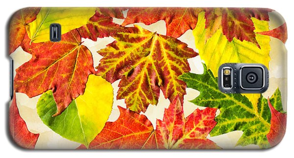 Galaxy S5 Case featuring the mixed media Fall Leaves Pattern by Christina Rollo