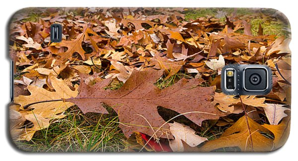 Fall Galaxy S5 Case by Lora Lee Chapman