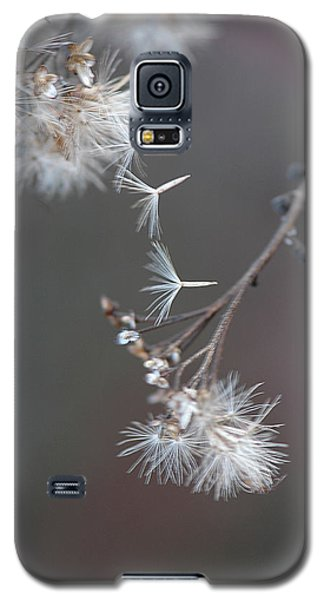 Galaxy S5 Case featuring the photograph Fall - Macro by Jeff Burgess