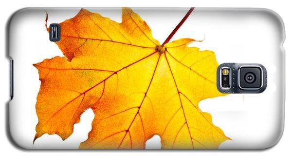 Fall Maple Leaf Galaxy S5 Case