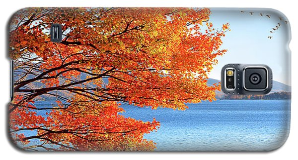 Fall Maple Tree Graces Smith Mountain Lake, Va Galaxy S5 Case