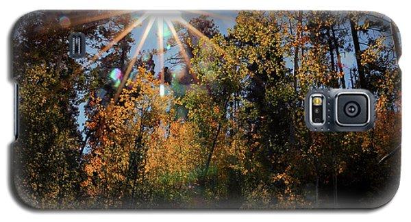 Fall Mt. Lemmon 2017 Galaxy S5 Case