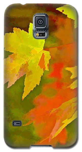 Fall Of Leaf Galaxy S5 Case