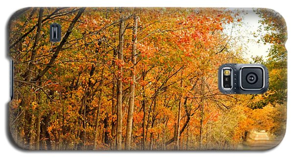 9012 - Fall On Murphy Lake II Galaxy S5 Case