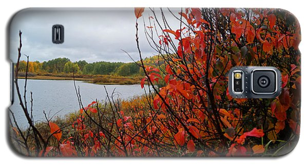 Fall On The Lake Galaxy S5 Case