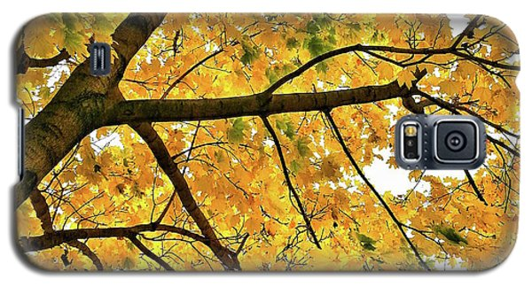 Fall On William Street Galaxy S5 Case