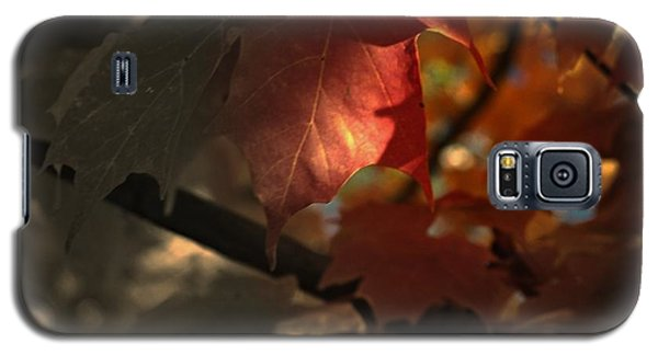 Fall Or Not Galaxy S5 Case