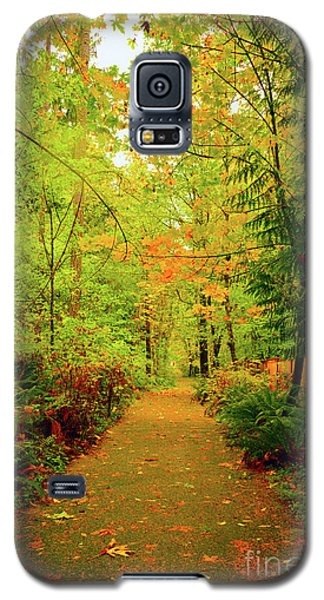 Fall Path Too Galaxy S5 Case