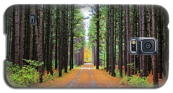 Fall Pines Road Galaxy S5 Case
