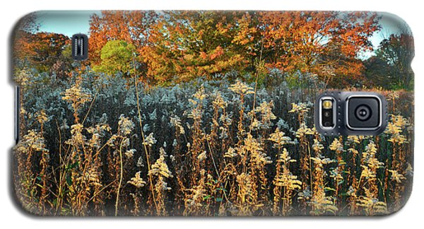 Galaxy S5 Case featuring the photograph Fall Prairie In Moraine Hills by Ray Mathis