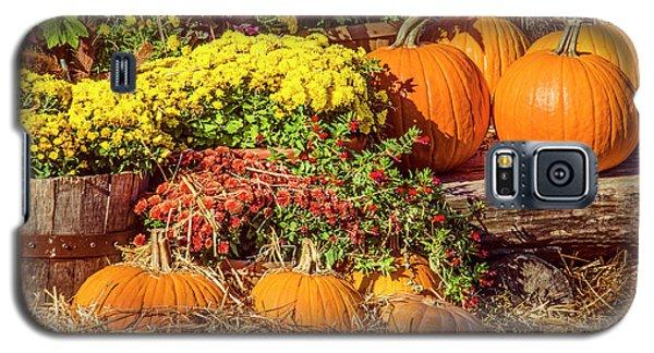 Fall Pumpkins Galaxy S5 Case by Carolyn Marshall