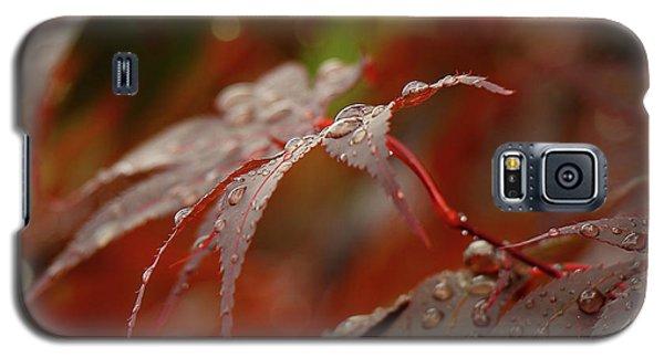 Fall Rain Galaxy S5 Case