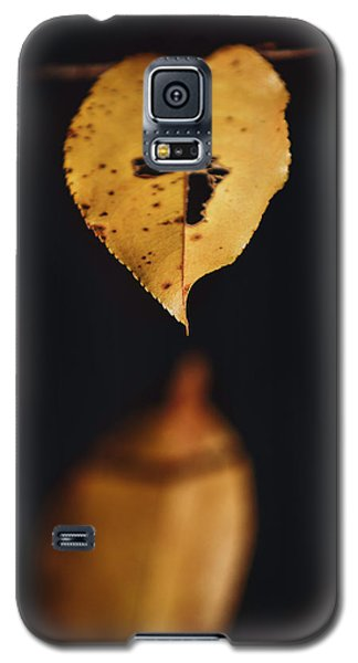 Fall Reflections Galaxy S5 Case by Eduard Moldoveanu