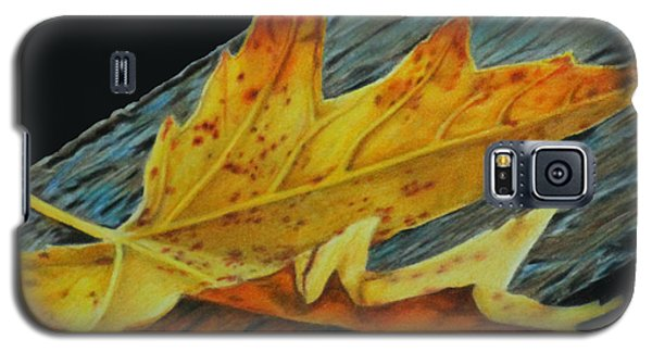 Galaxy S5 Case featuring the painting Fall Reflections by Jennifer Watson