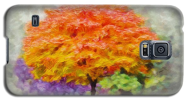 Fall Tree Galaxy S5 Case by Greg Collins