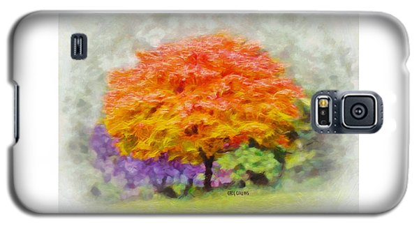 Fall Tree Galaxy S5 Case