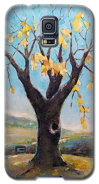 Fall Tree In Virginia Galaxy S5 Case by Becky Kim