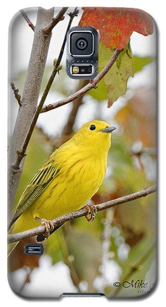 Fall Warbler Galaxy S5 Case