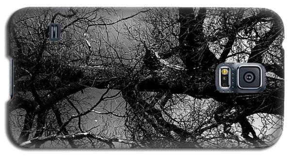 Fallen Dark Wood Forest Galaxy S5 Case