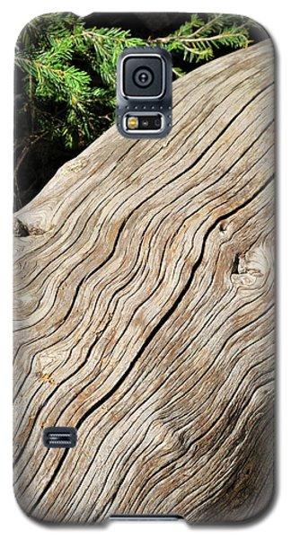 Fallen Fir Galaxy S5 Case