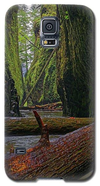 Galaxy S5 Case featuring the photograph Fallen by Jonathan Davison