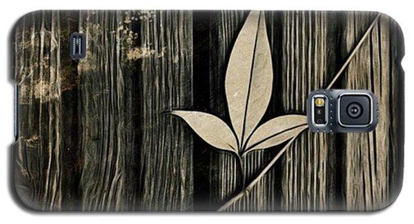 Galaxy S5 Case - Fallen Leaf by John Edwards