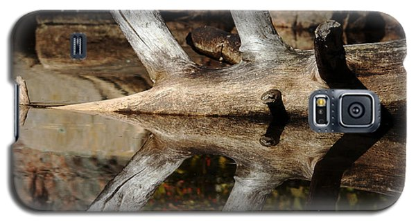 Galaxy S5 Case featuring the photograph Fallen Tree Mirror Image by Debbie Oppermann
