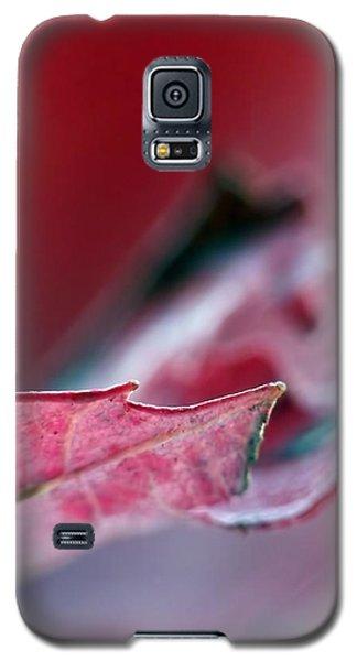 Falling I Galaxy S5 Case