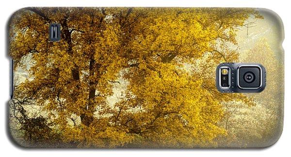 Fall's Beauty Galaxy S5 Case
