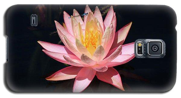 Familiar Bluet Damselfly And Lotus  Galaxy S5 Case