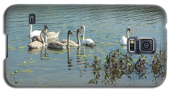 Family Of Swans Galaxy S5 Case