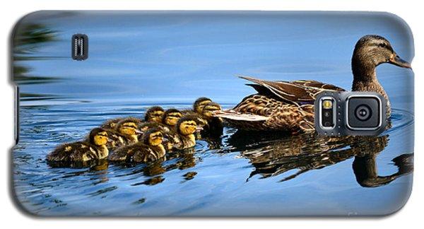 Family Swim Galaxy S5 Case