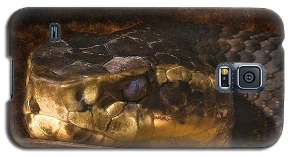 Fang Galaxy S5 Case