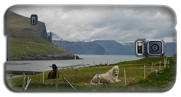 Faroe Islands Horses Galaxy S5 Case