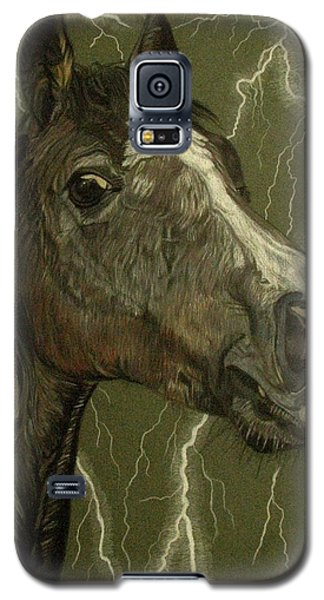 Galaxy S5 Case featuring the drawing Fantasy Xanthus by Melita Safran